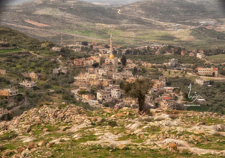 masribrahim5